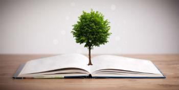 מיחזור דפים | ע.ב מסחר בעץ